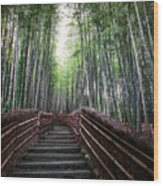 Bamboo Forest Of Japan Wood Print by Daniel Hagerman