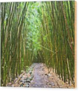 Bamboo Forest Trail Hana Maui 2 Wood Print