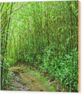 Bamboo Forest Trail Wood Print