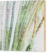 Bamboo Forest Watercolor Wood Print