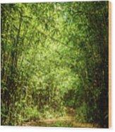 Bamboo Hike Wood Print