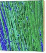 Bamboo Johns Yard 21 Wood Print