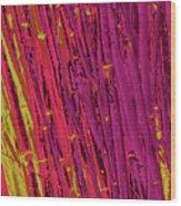 Bamboo Johns Yard 22 Wood Print