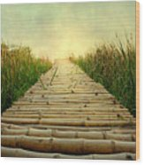 Bamboo Path In Grass At Sunrise Wood Print