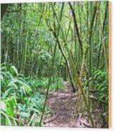 Bamboo Trail Wood Print