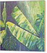 Banan Leaf Wood Print by Carol P Kingsley