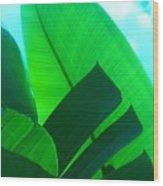 Banana Aqua Wood Print