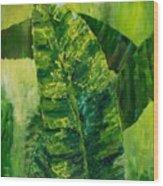 Banana Leaves II Wood Print