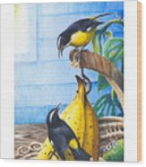 Bananaquits And Bananas Wood Print