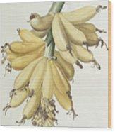 Bananas Wood Print by Pierre Joseph Redoute