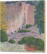 Bandelier 2004 Wood Print