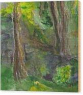 Bandera Trees Wood Print