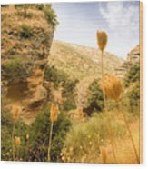 Bandit Country Near The Edge Of The Fan In Ronda Area Andalucia Spain  Wood Print