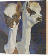 Bandolero And Carlos Wood Print