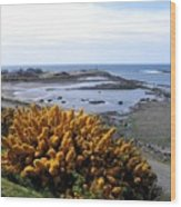 Bandon Harbor Entrance Wood Print