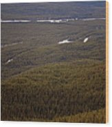 Banff National Park Forest Wood Print