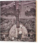 Banjo Mandolin On Garden Wall Wood Print