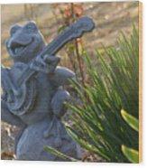 Banjo Playin' Bull Frog Wood Print