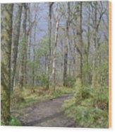 Banks Of Loch Lomond, Scotland Wood Print