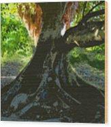 Banyan Wood Print