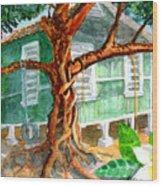 Banyan In The Backyard Wood Print