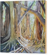 Banyan Shadow And Light Wood Print