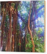 Banyan Tree Wood Print
