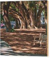 Banyans - Marie Selby Botanical Gardens Wood Print
