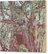Baoba In Foliage Wood Print