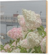 Bar Harbor Flowers In The Fog Wood Print