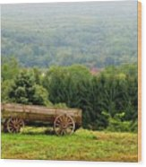 Baraboo Hillside Wood Print