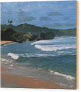 Barbados Berach Wood Print