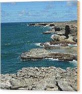 Barbados Coast Wood Print