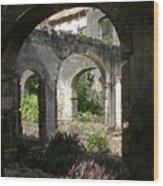 Barbados Ruins Wood Print