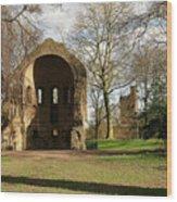 Barbarossa Ruin And Belvedere Wood Print