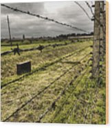 Barbed Wire Fence Wood Print