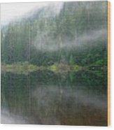 Barclay Lake, Reflected Wood Print