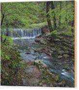Bard Springs Wood Print