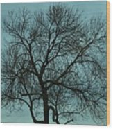Bare Branches And Storm Clouds Wood Print