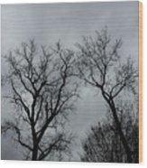 Bare, Raw, Cold Winter Day  Wood Print