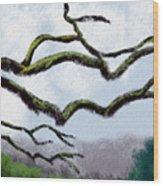 Bare Tree Branches Wood Print