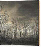 Bare Trees In A Winter Sunset Wood Print