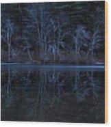 Bare Trees Reflected Wood Print