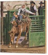 Bareback Riding At The Wickenburg Senior Pro Rodeo Wood Print