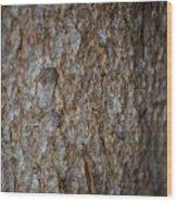 Bark 2 Wood Print