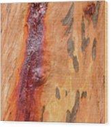 Bark Kc05 Wood Print