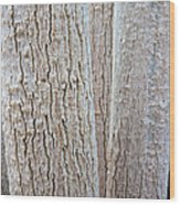 Bark, Moringa Tree Wood Print