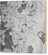 Bark With Heart Wood Print