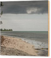 Barkers National Park Beach Wood Print