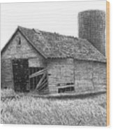 Barn 19 Wood Print by Joel Lueck